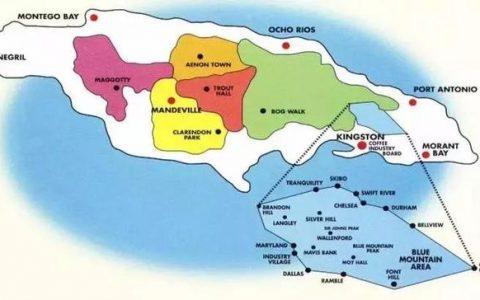 """不是所有标""""蓝山""""都是真蓝山,牙买加蓝山和蓝山风味咖啡的区别"""