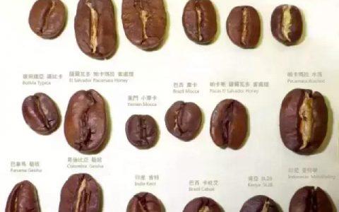 生活中,喜欢喝咖啡,该如何选择咖啡豆呢?