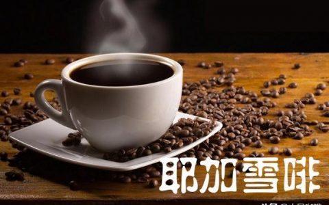 喜欢喝咖啡的亲们看过来!稍微聊聊耶加雪啡