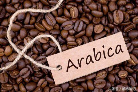 知识普及美式咖啡、黑咖啡、速溶咖啡、意式咖啡有什么区别?