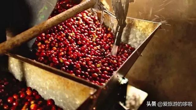 大自然的馈赠|来看看世界顶级咖啡的诞生地