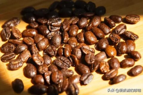 咖啡产区|【耶加雪菲】和【西达摩】区别