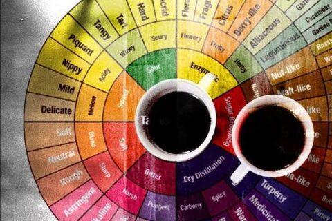 """老板!为什么我冲的咖啡会涩?哈?涩还分""""好""""涩、""""坏""""涩?"""