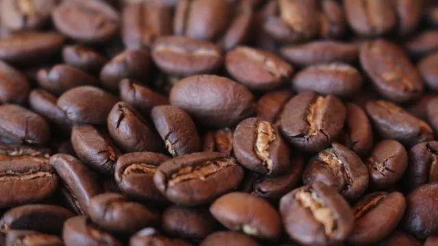 瑰夏,满足你对咖啡的所有想象
