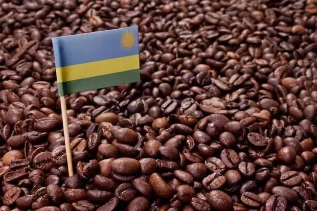 世界顶级咖啡产地,你知道几个?