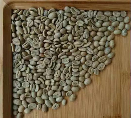 新手咖啡豆推荐 | 如何挑选适合自己的咖啡豆?